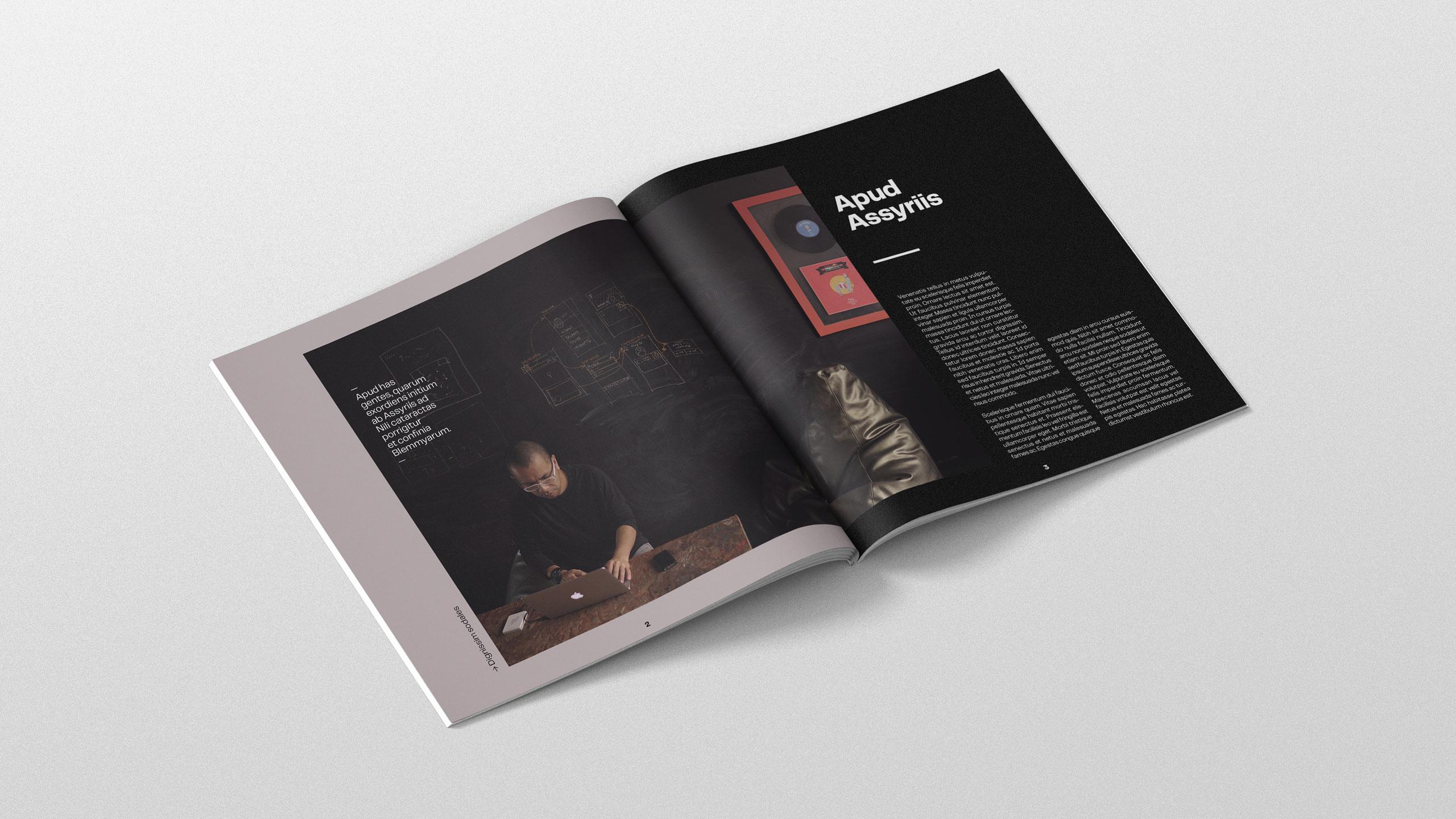 antoine-cornou-book-inside-editorial-design