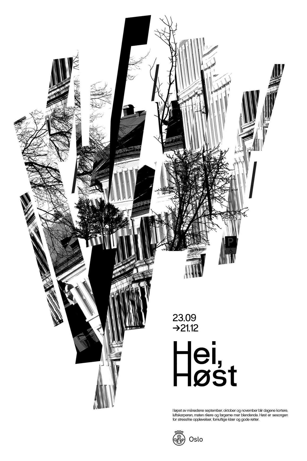 antoine-cornou-poster-host
